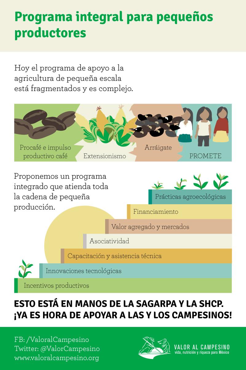 9 NOV - Programa integral para pequeños productores